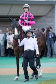 潘頓今日策六歲雄馬Smart Liberty於世界超級騎師大賽尾關賽事2014傑出騎師錦標中得第八名。