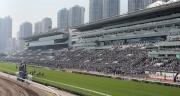 圖14, 15<br> 沙田馬場是日舉行國際馬壇盛事浪琴表香港國際賽事,看台人山人海。