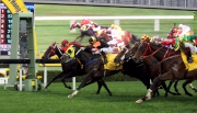 圖一、二、三<br> 由約翰摩亞訓練的香港賽駒「魔法豪情」(9號馬/紅黑間條綵衣),於莫雷拉胯下力壓「比卡超」(11號馬/黃黑綵衣)率先觸線,勝出今日於沙田馬場舉行的香港三級賽港澳盃。