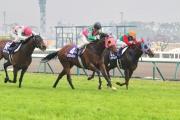 香港短途佳駟「友瑩格」(4號)在騎師潘頓的出色發揮下,力壓日本馬「白山明月」(15號)與「覓奇島」(16號),勝出在日本舉行的高松宮紀念賽(1200米國際一級賽),成為首匹勝出此賽的海外賽駒。