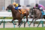 香港冠軍騎師莫雷拉今日夥拍Bravissimo(十二號馬)勝出世界星級騎師大賽第三關賽事。