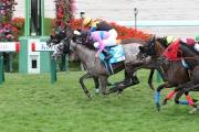 莫雷拉策騎Bravissimo沿內欄以佳勢上前,擊敗武豊的坐騎Fair Raffine取得勝利。(圖片由日本中央競馬會提供)
