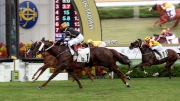Photo 1, 2, 3<br> Able Friend (No.1), ridden by Karis Teetan and trained by John Moore, scores in the Premier Bowl (HKG2 �V 1200M). Gold-Fun (No.2) and Peniaphobia (No. 5) finished second and third respectively.