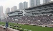 圖十五, 十六<br> 沙田馬場是日舉行國際馬壇盛事浪琴表香港國際賽事,看台人山人海。