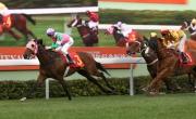 圖1, 2, 3<br> 香港速度系列首關賽事百週年紀念短途盃,今日在沙田馬場舉行,潘頓策騎蘇保羅訓練的「友瑩格」(3號馬)勝出這場途程1200米的香港一級賽。