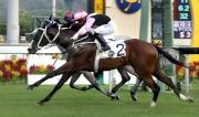 「美麗大師」(2號馬)於今季較早時攻下途程1400米的第一班賽事廣東讓賽盃。