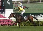 圖一、二、三、四<br> 一眾國際頂級佳駟今日在沙田馬場角逐本年度愛彼女皇盃(國際一級賽2000米)。香港代表「明月千里」(10 號馬)在騎師布文胯下,勝出此場總獎金達二千萬港元的賽事。