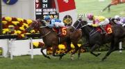 由約翰摩亞訓練的「無敵飛龍」(5號馬)勝出今日於沙田馬場舉行的一班1400米賽事賀年盃。