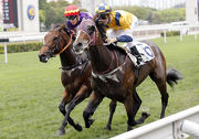 Amusing City takes the season��s first Griffin race under Sam Clipperton.