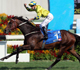 Werther's untouchable in G1 Standard Chartered Champions & Chater Cup