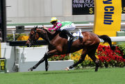 Photo 1, 2<br> The Tony Millard-trained Horse Of Fortune (No.2) edges past Romantic Touch (No.3) and Harbour Master (No.4) to take the G3 Premier Plate Handicap (1800m) at Sha Tin Racecourse today.