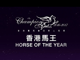 [The Champion Awards 2016/17 ] Horse of the Year