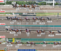 Results - Racing Information - Horse Racing - The Hong Kong