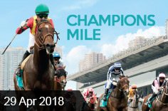 7 May 2017 – Champions Mile